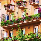 Rococo style Italian balconies overflowing flowers by creativetravler
