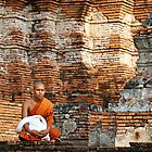 Monk Among Ruins by Dave Lloyd