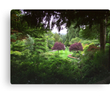 Sunken Garden No.3 Canvas Print