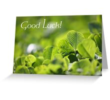 Good Luck - Greet Card Greeting Card