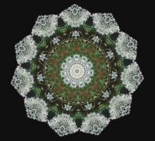 Hemlock / Queen Anne's Lace Mandala by venusfire