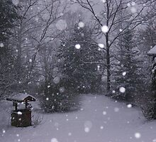 Winter Wonderland in the Appalachians by Linda Costello Hinchey