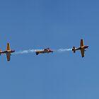 Redbull Air Race - Perth 2007 by rhizome