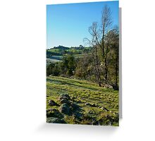 Morning Frost, Strathbogie Ranges,Victoria Greeting Card