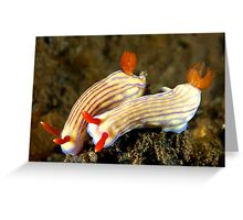 Nudi Pair Greeting Card