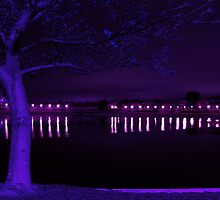 Lake at Night by mattsibum