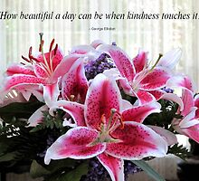 Pic Quote of the Day (kindness) by Prismcrow