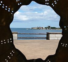 Dun Laoire from the Sea Urchin Ireland by Aoife McNulty