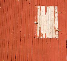 Breakaway Barn by Steve  Bootay