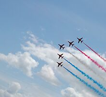 The red arrows  by emma27