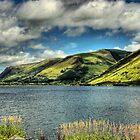 Lake Tal-y-Llyn by SimplyScene
