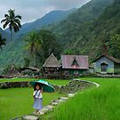 RICE TERRACES - PHILIPPINES by Michael Sheridan