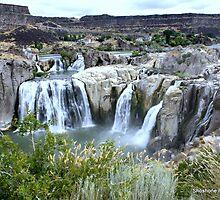 Shoshone Falls by grandmadd