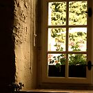 Window at Château de Vaux-le-Vicomte  by Louise Fahy