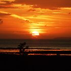 Sun Rise at Dunster by Darron Palmer