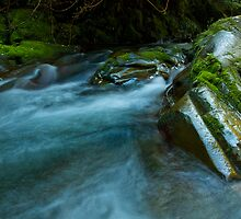 Barrington Rapids - Barrington Tops NP, NSW by Malcolm Katon