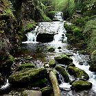 Watersmeet, Devon by 'ö-Dzin Tridral