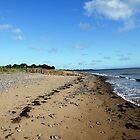 Dunster Beach by Darron Palmer