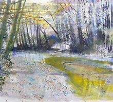River Plym 1 by Richard Sunderland