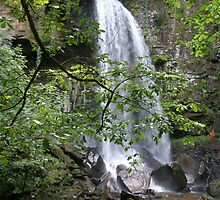 Melin Court Falls by Lorna Boyer
