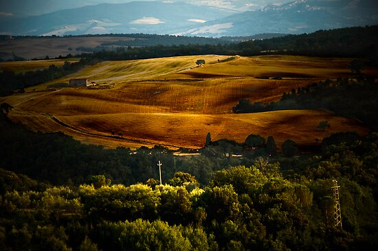 Tuscan Light by Mary Ann Reilly