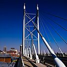 Nelson Mandela Bridge & Walkway by RatManDude