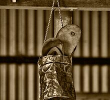 Thongs  by Pene Stevens