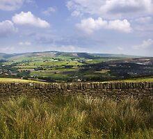 Holcombe Moor - Lancashire (England) by Carl Gaynor