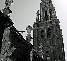 "Temples - ""Primate Cathedral of Toledo (ES)"" by Denis Molodkin"