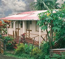 Martinique country house by Jerry Clitty