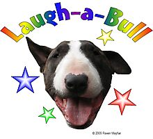 Laugh-a-Bull Photographic Print