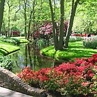 Keukenhof gardens by Elena Skvortsova