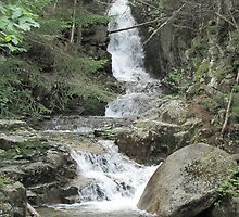 Beecher Cascades in their Glory by maxy