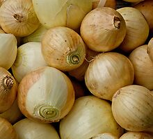 Onions by Jeffrey  Sinnock
