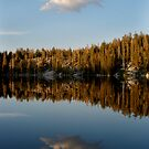 Mirror Lake by Jonathan Parrish