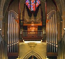 Opus 120 - The Organ of the Cathedral of Lausanne by kilmann