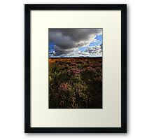 Heather Framed Print