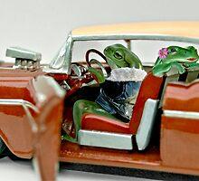 Cruising Froggies by Steven  Agius