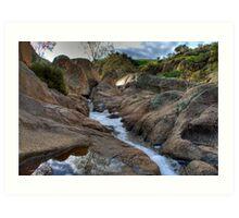 Reedy Creek Waterfalls Art Print