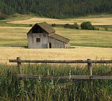 Rustic Haven by cntrygrl