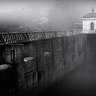 Mundaring  Weir Fog by Elana Halvorson
