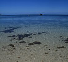 Fijian Waters by Kimberley Gifford