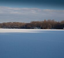 Lake Mamanasco frozen morning south shore - February by Andrew Hubbell