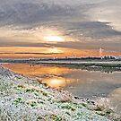Frosty Morning x 2 by AnnDixon