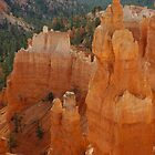 Bryce Canyon by AnaBrun
