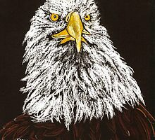 Bald Eagle by Dawn B Davies-McIninch