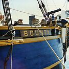 Bow Chaser and Anchor, HMS Bounty by Mike Oxley