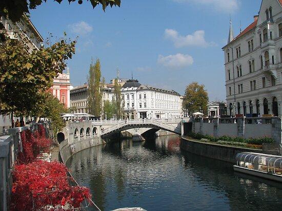 Ljubljana Triple Bridge  by Elena Skvortsova