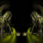 The Faces of Apophysis 2010 by Virginia N. Fred