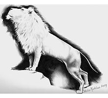 White Lion Photographic Print